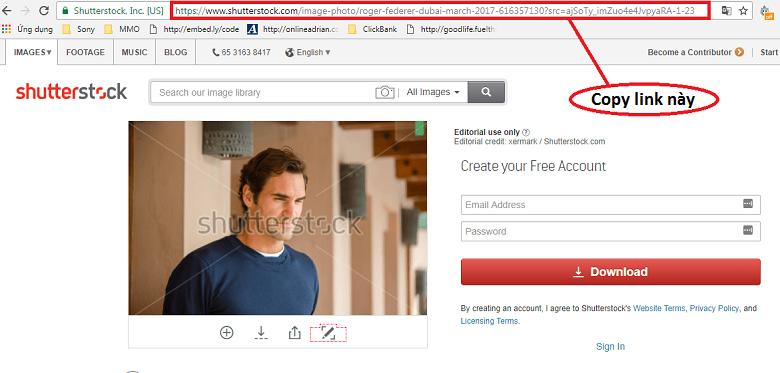 Tải ảnh Shutterstock và loại bỏ watermark - Tin Tran